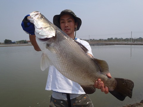 2013.02.14 BKK FISHING POND 037.jpg