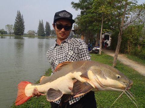 2013.02.14 BKK FISHING POND 091.jpg