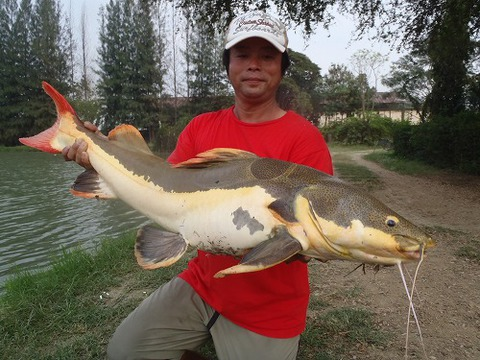 2013.02.14 BKK FISHING POND 098.jpg